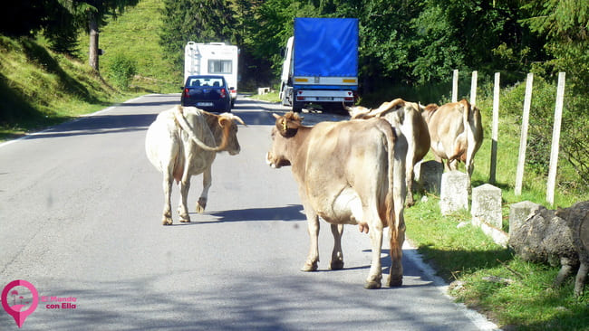 Conducir en Rumanía